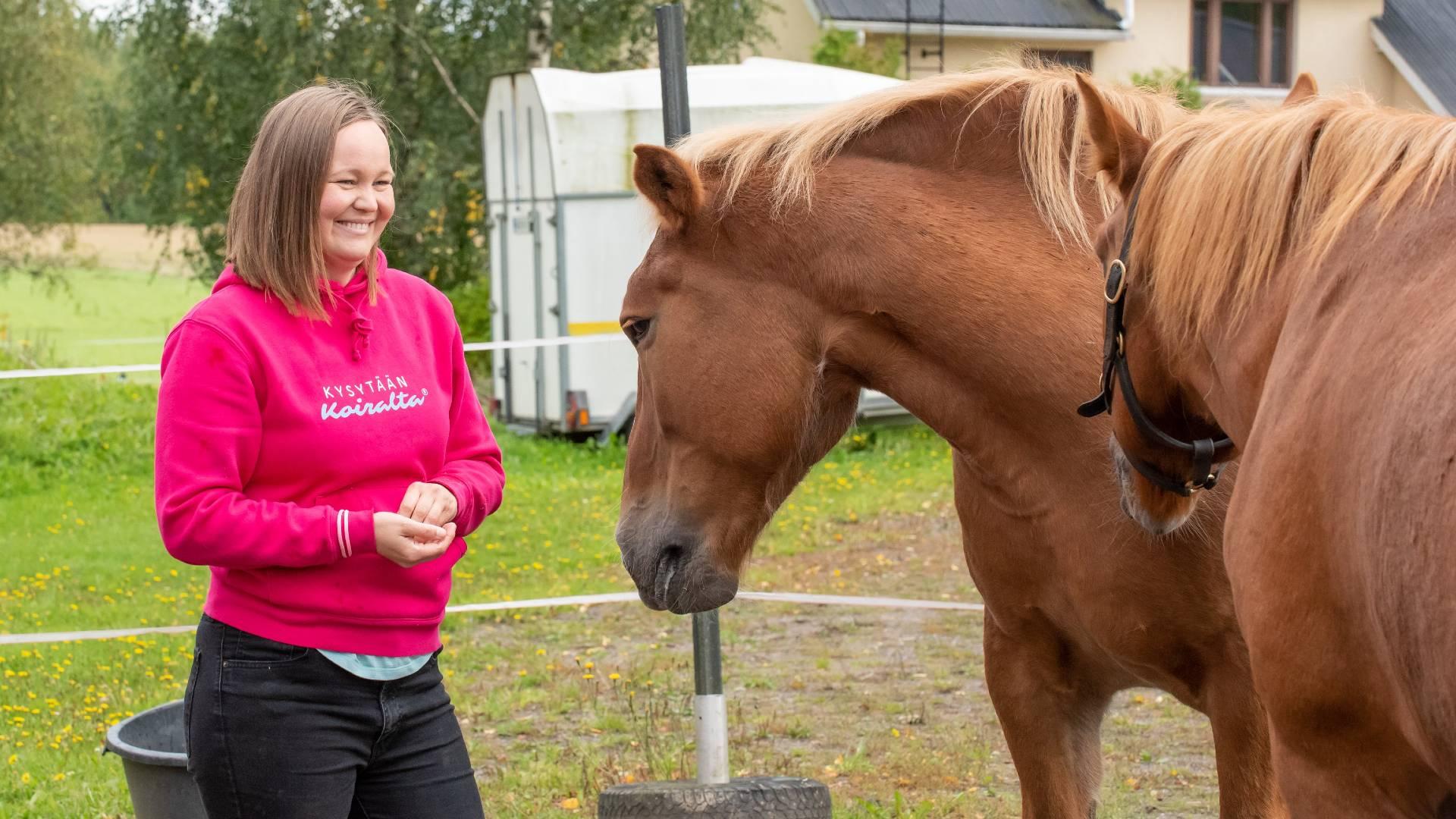 hevosen maastakäsittely